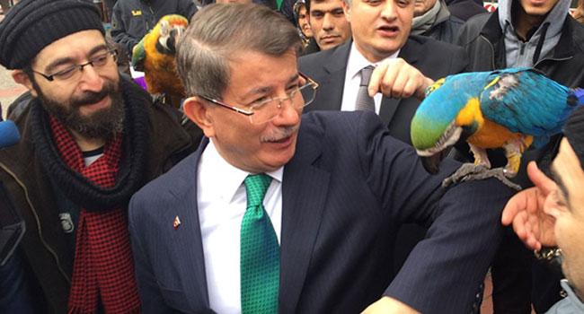 Davutoğlu'nun Papağan'la imtihanı