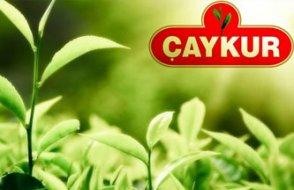 Skandal işçi alımı: AKP'li çıkana kadar kuraya devam