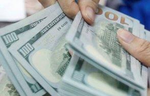 'Doların yükselişi sürer, borçlanırken dövizden uzak durun'