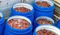 Ramazan öncesi büyük şok  Satışa hazır 5 ton domuz eti ele geçirildi