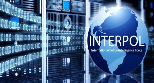 Almanya Türkiye'ye karşı İnterpol'ü uyaracak