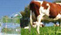Süte bir ayda yüzde 23 zam