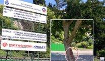 Bebek Aşiyan Parkı kapatıldı, ağaçlar işaretlendi...