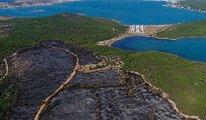 Ayvalık'taki tabiat parkını küle çeviren yangında kundak şüphesi