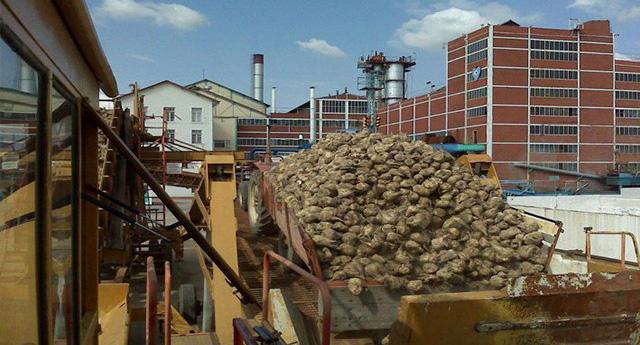Şeker fabrikaları birer birer elden çıkarılıyor...