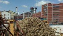Şeker Fabrikası satışı fiyaskosunun sebebi ortaya çıktı