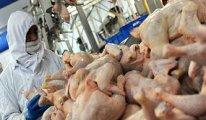Tavukçuların yarısı iflas edecek, bu kez onlar basılacak