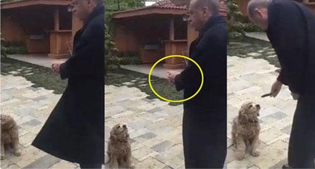 Erdoğan'ın köpeğe salatalık vermesi sosyal medyayı salladı....
