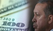 'Türk lirasının değer kaybından Erdoğan sorumlu'
