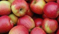 Rusya, Belarus üzerinden Türkiye menşeli elma ithalatını yasakladı