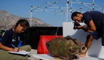 58 antik gemi enkazı bulundu
