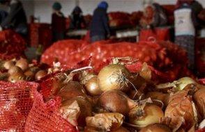 Sektör, bu yıl içinde soğanın 10 liraya fırlamasını bekliyor