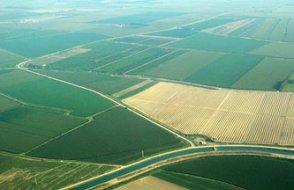 İspanya'da Koronavirüs sonrası yeni tarım kararı