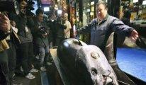Japonya'da dev orkinos balığı 3,1 milyon dolara satıldı