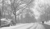 Almanya'da son 10 yılın en sert kışı