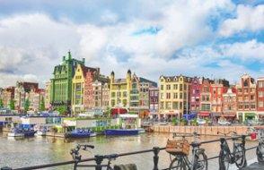 Hollanda'daki 15 kentte acil durum ilan edildi
