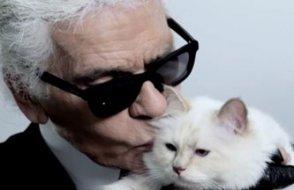 Karl Lagerfeld'in 200 milyon dolarlık mirası kedisine kalabilir