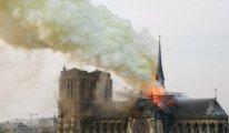 Notre-Dame'daki arılar yangından sağ kurtuldu