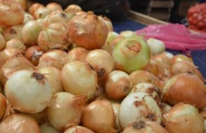 Soğan üreticisinden ihracat kısıtlamasına tepki