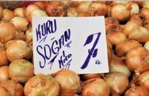 Soğan çöküşün sembolü: Halkı şucu-bucu, terörist diye böldüler