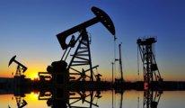 Enerjideki son iki şirket de Katar'a satılıyor