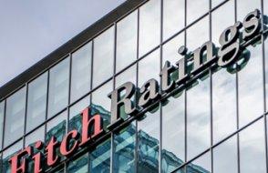 Fitch'ten 'dijital para' uyarısı