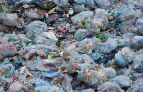 Araştırma: 'Bir yıllık plastiği temizlemek için bir milyar kişi gerekiyor'