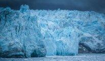 Buzullar için 2050 uyarısı