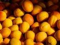 Rusya'dan Türkiye'nin tarım ürünleriyle ilgili yeni karar