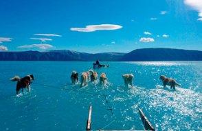 Grönland'da bir günde iki milyar tonluk buz eridi, ortaya bu kare çıktı