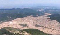 Kaz Dağları'nda ağaçlar kaçak mı kesildi?