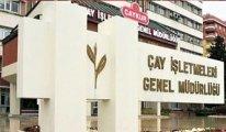 AKP'nin Çaykur saltanatı