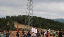 Kaz Dağları'nda on binlerce ağacın kesildiği alana bırakıldı