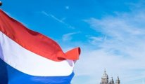 Hollanda hükümetinde bir Afganistan istifası daha