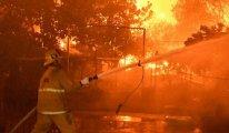 Yangın sürüyor: 100 bin kişi tahliye edildi!