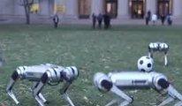 Robotlar  sahaya indi , futbol oynadı