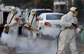 Zonguldak'ta virüs alarmı