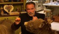 Arnold Schwarzenegger'den evcil hayvanlarıyla evden kalın mesajı