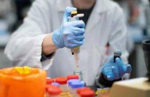 Alman bilim insanları gen tedavisiyle felçli fareyi yürüttüler