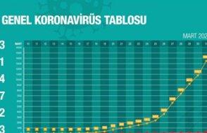 Ürkütücü: Bir günde 2 bin 704 yeni vak'a!