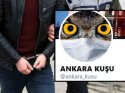 Aktrolün muhalifçilik oyunu tatsız bitti: 'Ankara Kuşu' gözaltında