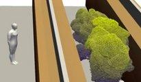 Koronavirüs böyle yayılıyor! Bilim insanları, 3D animasyonunu yaptılar
