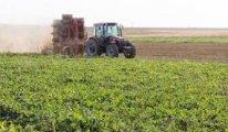 40 şehirdeki büyük kuraklık tarımı vurdu, bazı tarlalar biçilemiyor bile
