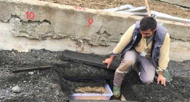 TİHV Başkanı Fincancı: Cenazelerin kaldırıma gömülmesi bir işkence suçudur