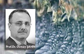 [Prof. Dr. Osman Şahin yazdı] Bu süreçte asıl yapılması gerekenler