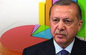 Ünlü araştırmacı: Erdoğan siyasi hayatının en büyük hatalarından birini yaptı