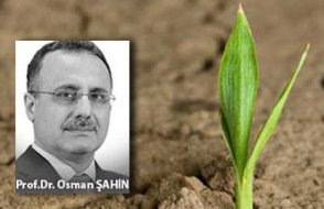 [ Prof. Dr Osman Şahin yazdı ] Merkeple sultanın huzuruna gidilmez