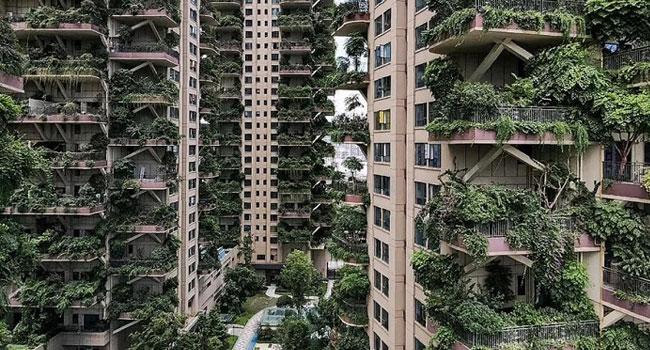 Yeşil apartman projesi kâbusa döndü!
