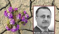 [Prof. Dr. Osman Şahin yazdı] Bireyin çiçek açması ve güvenememe problemi