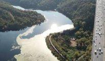 Yağışlar İstanbul'un barajlarını bir miktar rahatlattı